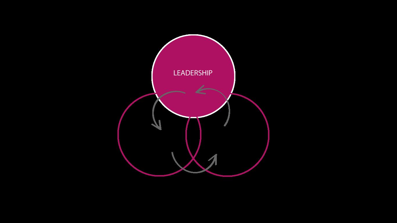 Leadership-Struktur-Kultur